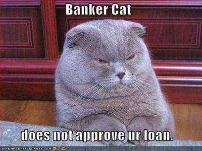 Meme - Banker cat does not approve your loan