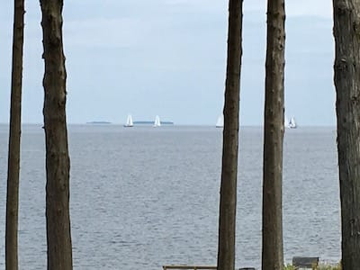 Sailboats on the lake